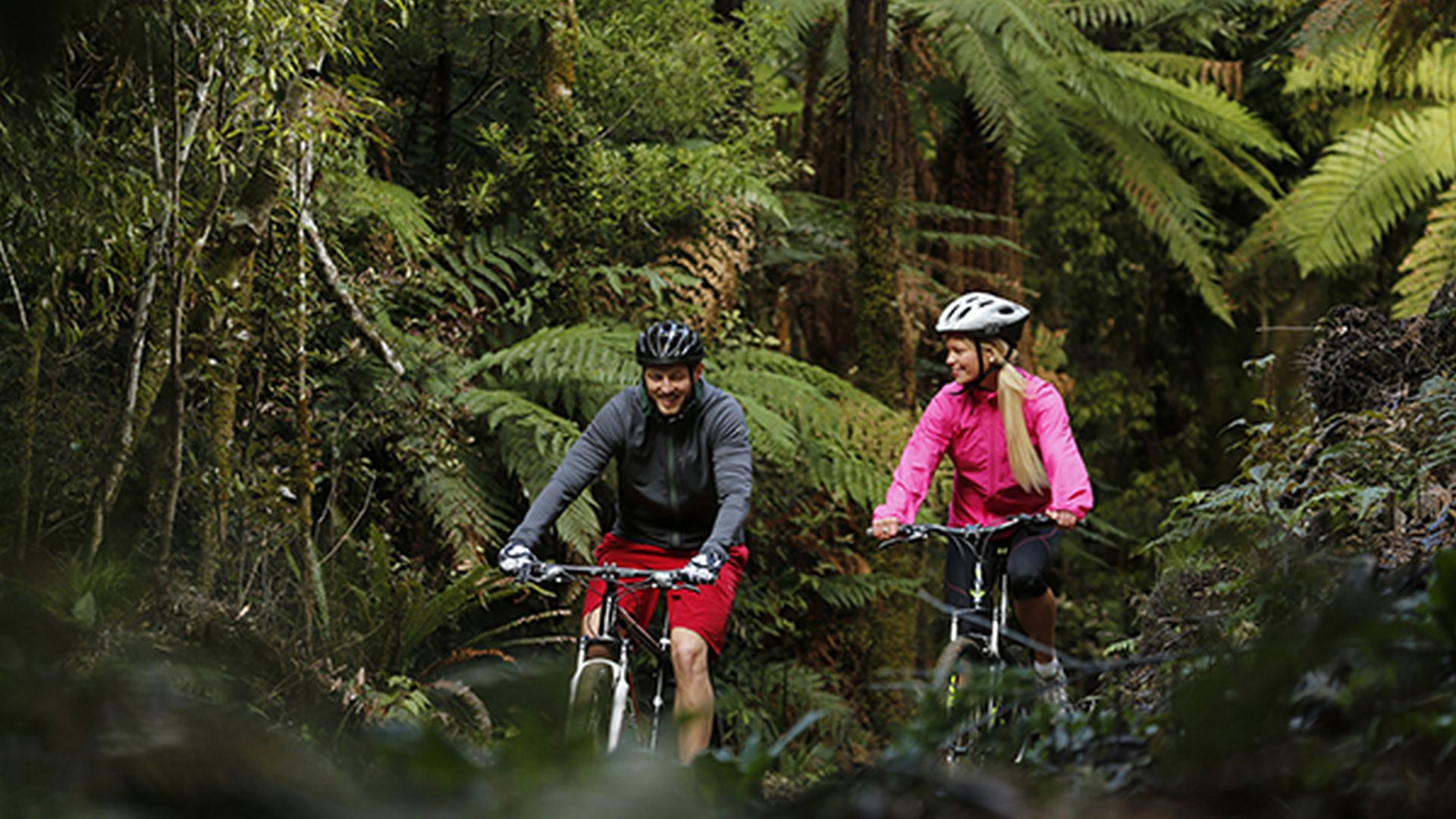 Tui Lodge luxury homestay is the perfect base for mountain biking